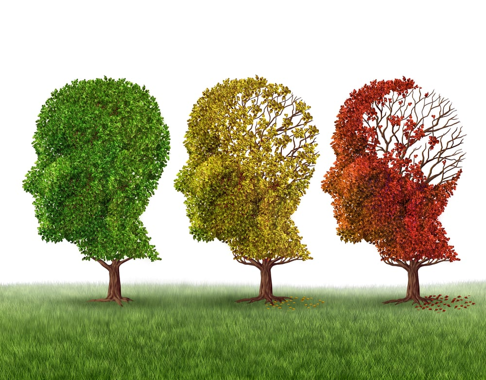 12 Facts about Alzheimer's Disease Every Carer Should Know